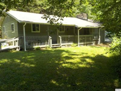 Gatlinburg Single Family Home For Sale: 246 Shields View Dr.