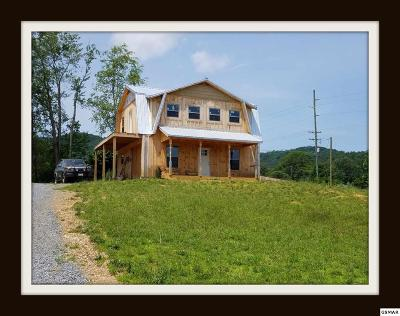 Sevierville Single Family Home For Sale: 3960 Wears Valley Rd
