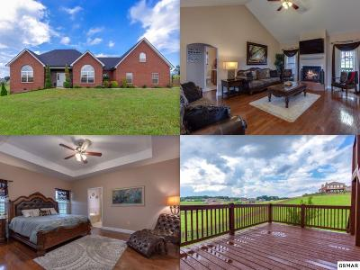 Sevierville Single Family Home For Sale: 1515 Laurel Falls Lane