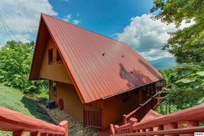 Gatlinburg Single Family Home For Sale: 1475 Zurich Road