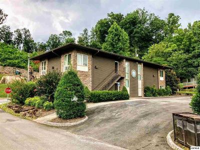 Gatlinburg Single Family Home For Sale: 425 Stuart Lane