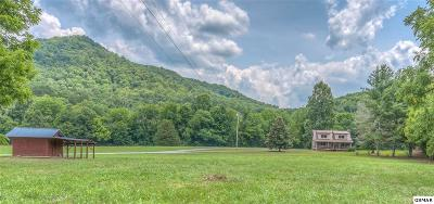 Sevierville Single Family Home For Sale: 601 Arch Rock