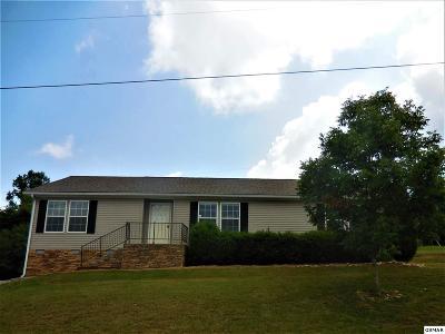 Dandridge Single Family Home For Sale: 1130 Case View Rd.