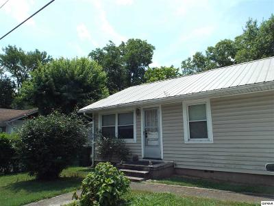 Sevierville Single Family Home For Sale: 209 Riverside