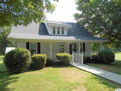 White Pine Single Family Home For Sale: 1704 Maple St