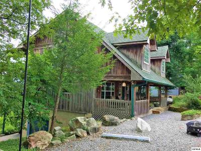 Sevierville Single Family Home For Sale: 710 Shell Mountain Rd