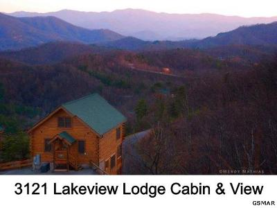 Sevierville Single Family Home For Sale: 3121 Lakeview Lodge Drive