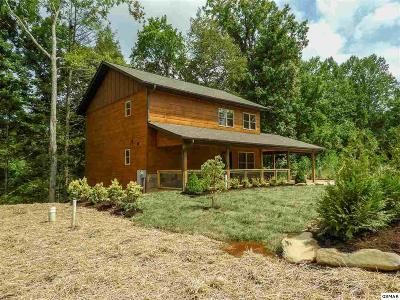 Gatlinburg Single Family Home For Sale: 538 Johnson Lane