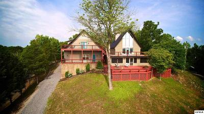 Sevierville Single Family Home For Sale: 1917 Dyke Nine