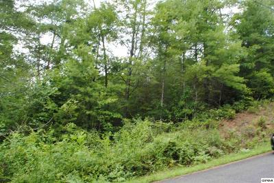 Sevierville TN Residential Lots & Land For Sale: $45,000