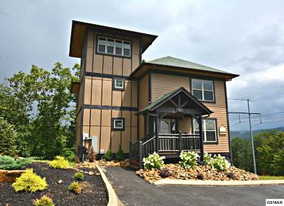 Pigeon Forge Single Family Home For Sale: 1016 Timeless Way