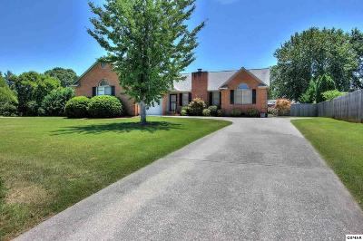Maryville Single Family Home For Sale: 3038 Eagle Drive