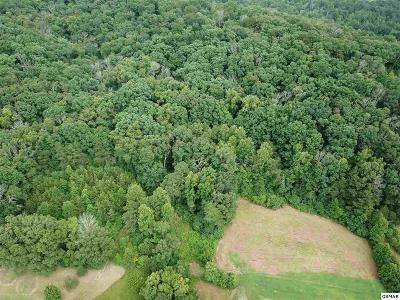 Residential Lots & Land For Sale: Tr1a Lillard Allen Ln