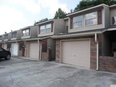 Sevier County Condo/Townhouse For Sale: 1308 Mountain Meadows Way