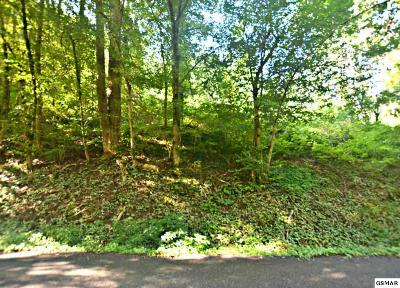 Gatlinburg TN Residential Lots & Land For Sale: $39,900