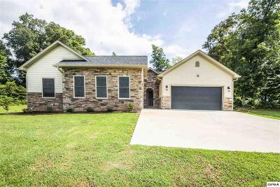 New Market Single Family Home For Sale: 2005 River Mist Cir
