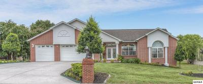 Sevierville Single Family Home For Sale: 615 Riverbrook Dr