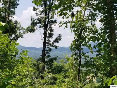 Sevier County Residential Lots & Land For Sale: Tract 5 Clabo Mountain Lane