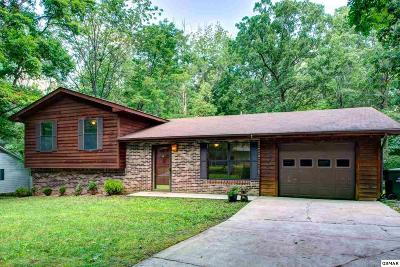 Pigeon Forge Single Family Home For Sale: 332 Birchwood Lane