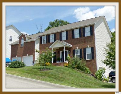 Knoxville Single Family Home For Sale: 2920 Oakwood Hills Ln