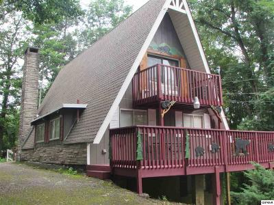 Gatlinburg Single Family Home For Sale: 1407 N Arbon Ln