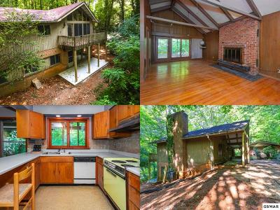 Knoxville Single Family Home For Sale: 2317 Lakemoor Dr