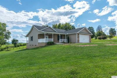 Kodak Single Family Home For Sale: 769 Tuckahoe View Trail