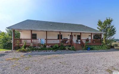 Dandridge Single Family Home For Sale: 795 Zirkle Rd