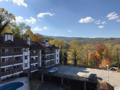 Gatlinburg Condo/Townhouse For Sale: 616 Turkey Nest Rd. Unit 306