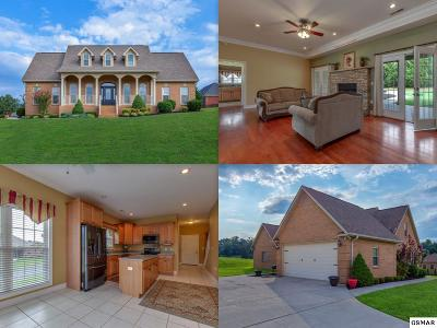 Sevierville Single Family Home For Sale: 1804 Placid Drive
