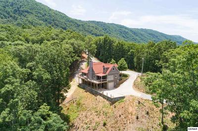 Maryville Single Family Home For Sale: 3690 Buck Hollow Rd