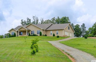 Sevierville Single Family Home For Sale: 1969 Rays Gap Rd