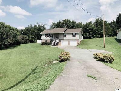 Dandridge Single Family Home For Sale: 301 St Edward Dr