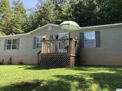 Sevier County Single Family Home For Sale: 1850 Blackberry Way