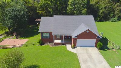 Seymour Single Family Home For Sale: 402 Meadowlake Circle