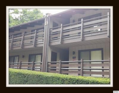 Sevierville Condo/Townhouse For Sale: 1081 Cove Rd