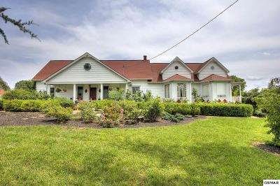 Dandridge Single Family Home For Sale: 1511 Denton Dr