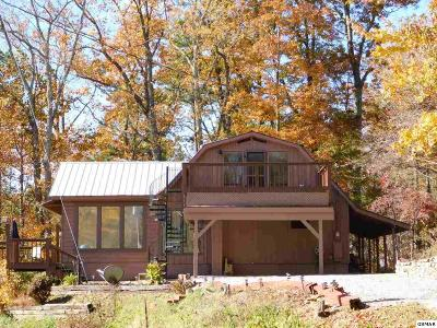Sevierville Single Family Home For Sale: 4239 Boogertown Road