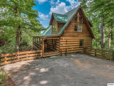 Sevierville TN Single Family Home For Sale: $380,000