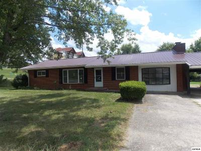 Pigeon Forge Single Family Home For Sale: 430 Shirley Avenue
