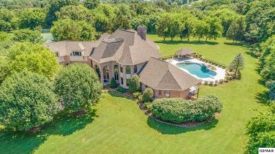 Knoxville Single Family Home For Sale: 2263 Henge Point Lane