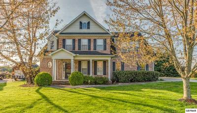 Knoxville Single Family Home For Sale: 3836 Holly Berry Drive