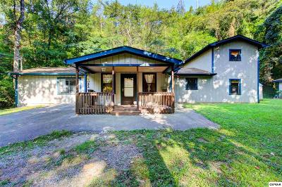 Sevier County Single Family Home For Sale: 3032 Pine Haven Dr