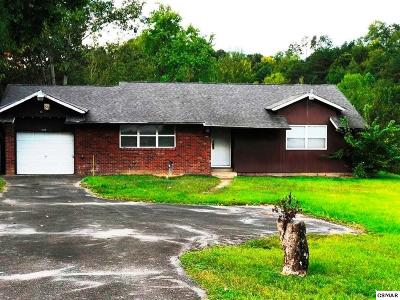Pigeon Forge Commercial For Sale: 2838 Florence Drive