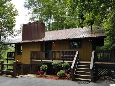 Gatlinburg Single Family Home For Sale: 552 Galloway Lane