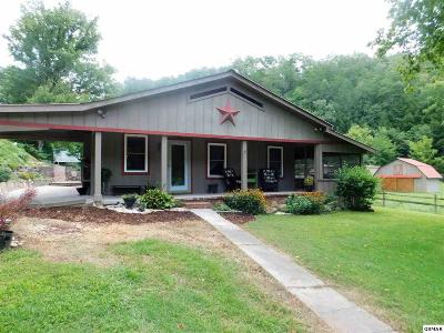 Sevierville TN Single Family Home For Sale: $209,900