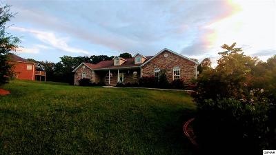 Sevierville Single Family Home For Sale: 1406 Alum Cave Cv