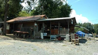 Cocke County Commercial For Sale: 3358 Cosby Highway