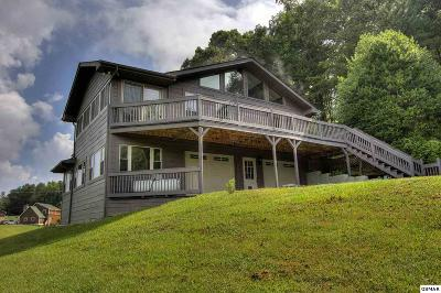 Sevierville Single Family Home For Sale: 3836 Pleasant View Lane