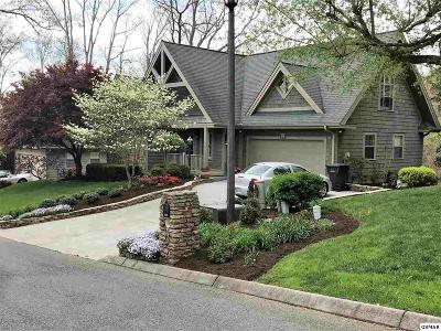 Sevierville Single Family Home For Sale: 309 Saddleback Way